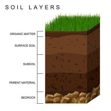 Soil layers diagram earth texture, stones. Ground with green grass on top. Mineral particles, sand, humus and stones, natural fertilizer. Geology infographics. Education for kids. Vector illustration