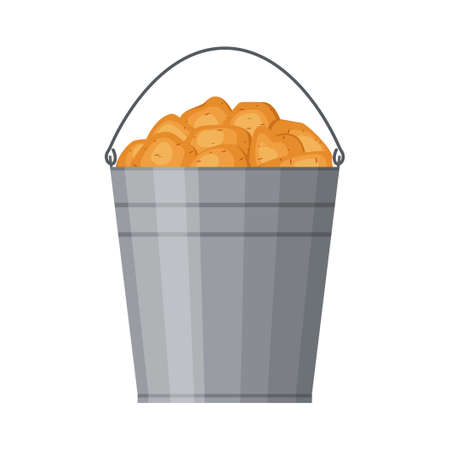 Metal bucket filled with potatoes isolated on white background. Harvested crop, pile of tubers plant. Fresh organic vegetable garden. Vector illustration