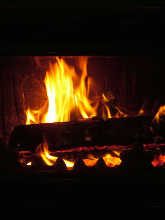 woodburner: fire