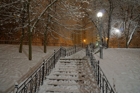 Night winter view on stairs in the park photo