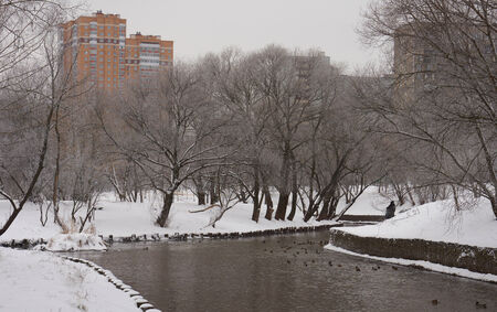 Winter scene on the Yauza river in late December photo