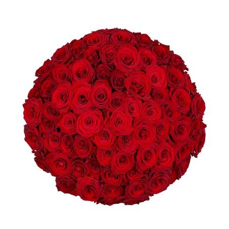 seventy: Settanta uno rose rosse isolato su bianco