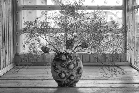 Black and white still life with dried flowers in russian country house