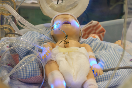 Infant dummy in neonatal intensive-care unit for medical students study Stockfoto
