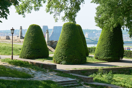 Trimmed and shaped shrubs in the Kalemagdan park of Belgrade fortress in Serbia