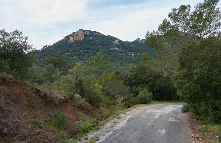 Road in the mountains in Domaine de Maure-Vieil, Mandelieu-La Napoule, French Riviera, France.