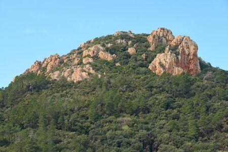 Mountains Alps-Maritimes in Domaine de Maure-Vieil, Mandelieu-La Napoule, French Riviera, France.