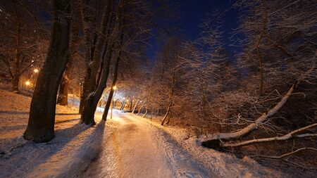 Beautiful night winter scene in Yauza park, Babushkinskiy district, Moscow Standard-Bild - 140277958