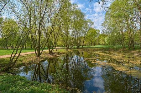Springtime landscape on the pond, Yuzhnoye Medvedkovo district, Moscow Standard-Bild