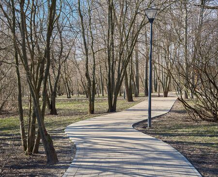 View of the park in springtime with pedestian walkway and street light in Yuzhnoye Medvedkovo district, Moscow