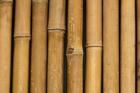 Bamboo lined verticaly creating a pattern
