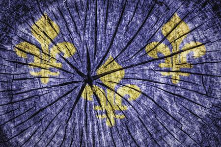 Old french flag on cracked wooden texture photo