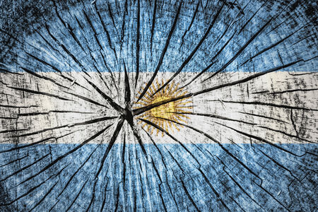 argentum: flag of  Argentina on cracked wooden texture