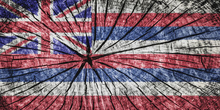 flag of Hawai on cracked wooden texture Banque d'images