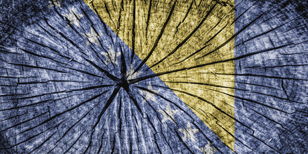 detachment: Flag of Bosnia and Herzegovina  on cracked wooden texture Stock Photo