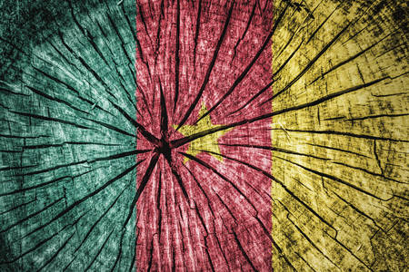 detachment: Flag of Cameroon on cracked wooden texture