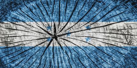 detachment: flag of Honduras on cracked wooden texture