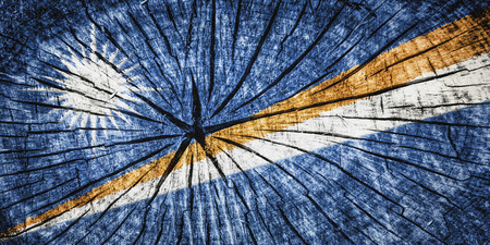 detachment: flag of the Marshall Islands  on cracked wooden texture
