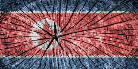 detachment: Flag of North Korea on cracked wooden texture