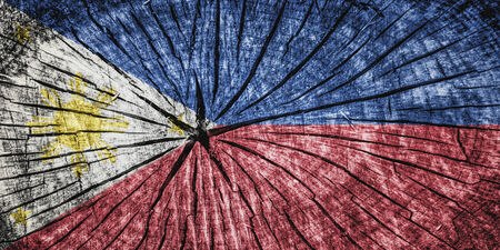 cross section of tree: Flag of  on cracked wooden texture Stock Photo