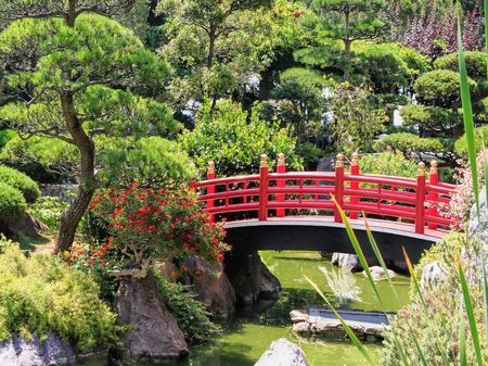 japanese bridge: Japanese garden of Monaco, with a Japanese bridge and a pond