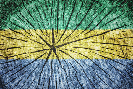 pygmy: Flag of Gabon on cracked wooden texture
