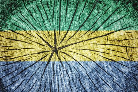pygmy: Flag of Gabon on cracked wooden texture