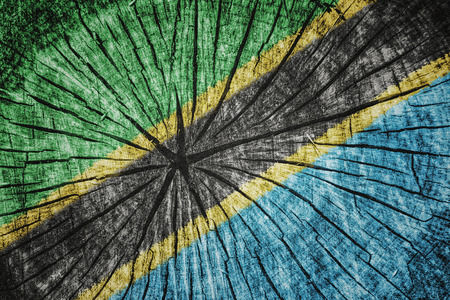 flag of  Tanzania on cracked wooden texture
