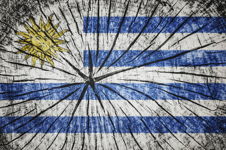 flag of  Uruguay on cracked wooden texture