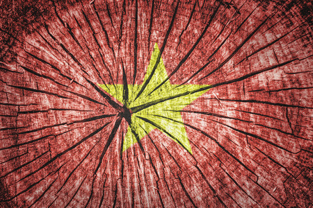 indochina peninsula: Flag of Vietnam on cracked wooden texture