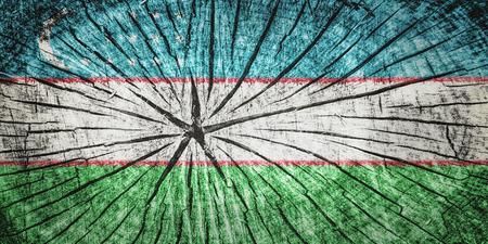 wood cross section: Flag of  Uzbekistan on cracked wooden texture Stock Photo