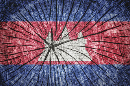 wood cross section: Flag of Cambodia on cracked wooden texture Stock Photo