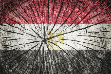 nile river: flag of Egypt on cracked wooden texture