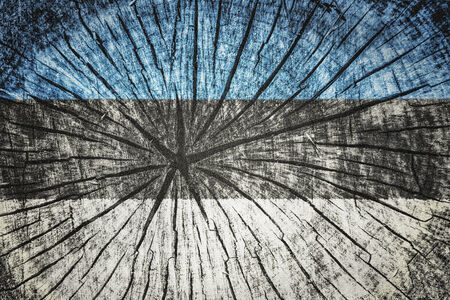 break up: Flag of Estonia on cracked wooden texture