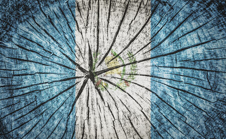 flag of Guatemala on cracked wooden texture photo
