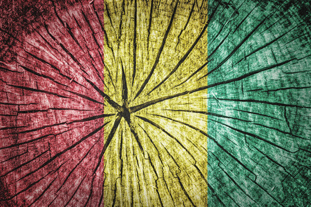 detachment: flag of Guinea on cracked wooden texture