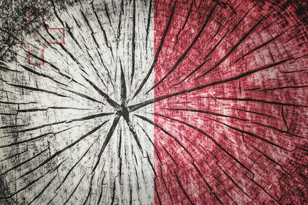 wood cross section: Flag of Malta on cracked wooden texture Stock Photo