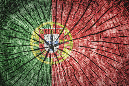 cross section of tree: Flag of Portugal on cracked wooden texture Stock Photo