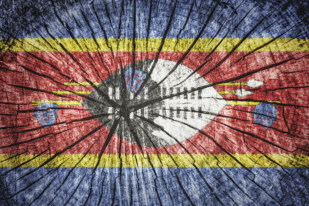 Flag of Swaziland on cracked wooden texture