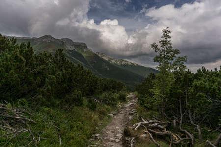 tatry: Mountain trail in Belianske Tatry. Slovakia