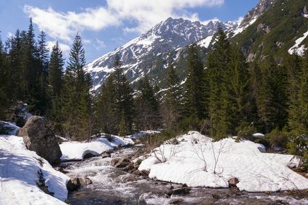 tatry: Spring mountain landscape. Tatry