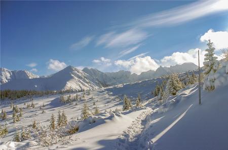 montañas nevadas: Hermoso paisaje de montañas nevadas Foto de archivo