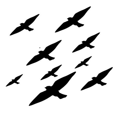 Grafica del modello di animali neri. Sfondo vettoriale di uccelli di gruppo Vettoriali