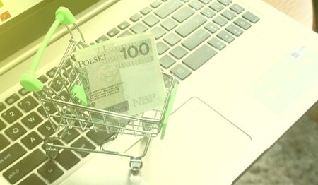 A mini shopping trolley standing on laptop with a Polish 100 zloty banknote as an online shopping concept.