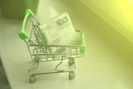 A mini shopping trolley with a Polish 100 zloty banknote as an online shopping concept.