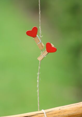 two clothes peg with a red heart hanging on line. Green background with grass. Love concept for valentine day.