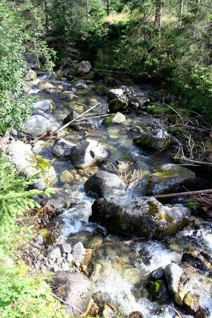 Small stream in the mountains with moss covered rocks 版權商用圖片