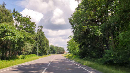 Road in the countryside. Summer travel. Rural street. Forest 版權商用圖片