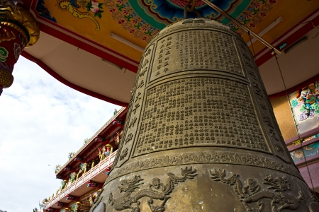 chinese holly: Chinese bells at thailand