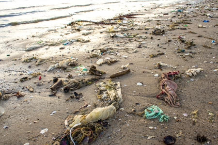 Very polluted beach